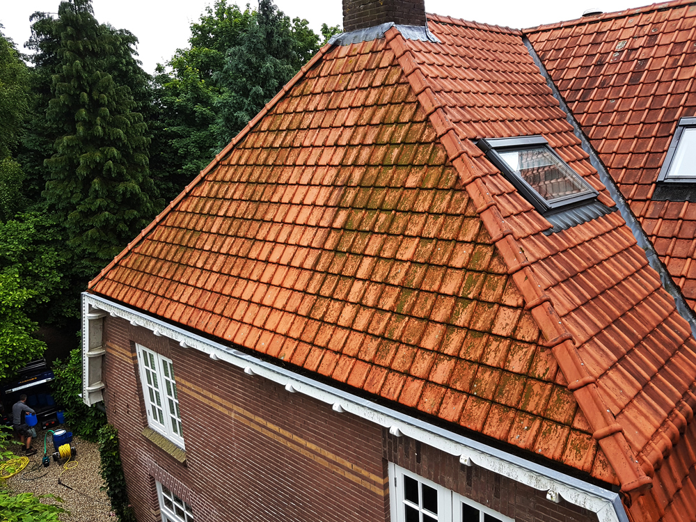 Roof cleaning without a high-pressure sprayer